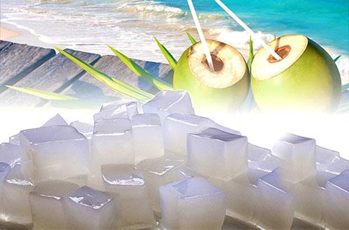 Hasil gambar untuk pemanfaatan Mikrobial Selulosa untuk nata de coco