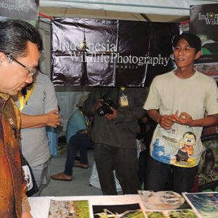 indonesia wildlife photography