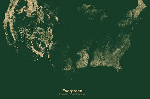 """""""Evergreen"""" karya Michael Pecirno. Gambar: Michael Pecirno/www.wired.com"""