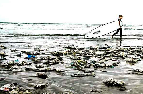 Foto: Parley for the Oceans/ecowatch.com