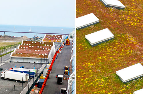 Terminal Malmo di Kopenhagen dirancang dengan atap yang ramah lingkungan. Foto: Heather Shimmin/inhabitat.com