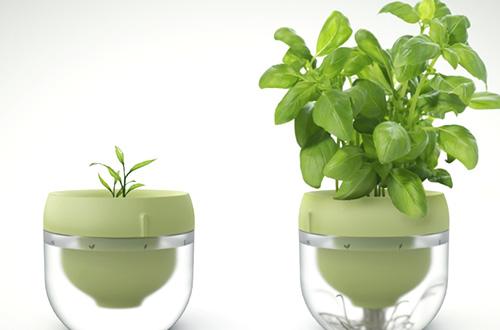 Droponic memungkinkan berkebun di dalam rumah. Foto: inhabitat.com