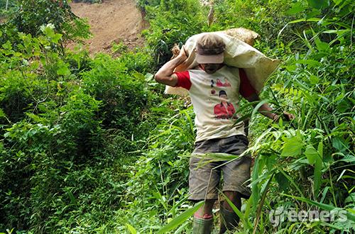 Aktifitas tambang yang dilakukan warga sekitar. Foto: greeners.co/Danny Kosasih