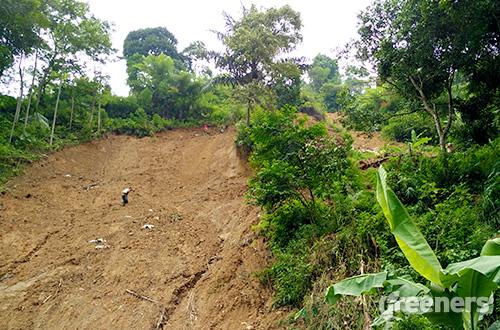 Penambangan yang tidak sesuai aturan membuat tanah rawan longsor. Foto: greeners.co/Danny Kosasih