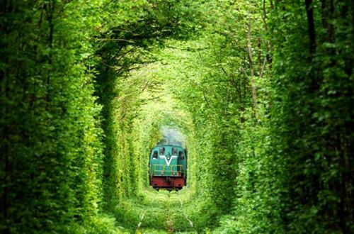 """""""Tunnel of Love"""" atau terowongan cinta di Ukraina. Foto: YouTube/inhabitat.com"""