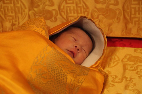 Kelahiran pangeran Bhutan dirayakan dengan aksi penanaman 108.000 pohon. Untuk saat ini sang pangeran diberi panggilan The Gyalsey. Foto: Jetsun Pema/inhabitat.com