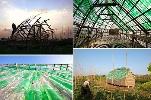 Bottle Seedling House merupakan rumah pembibitan yang terbuat dari rangka bambu dan botol plastik. Foto: Vu Xuan Son/inhabitat.com