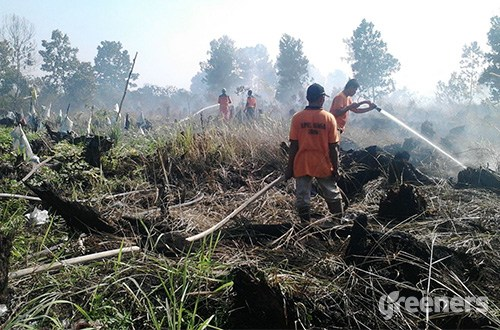 land fires