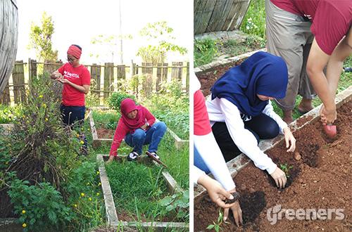 Bekasi Berkebun. Foto: greeners.co/Danny Kosasih