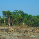 target penurunan emisi