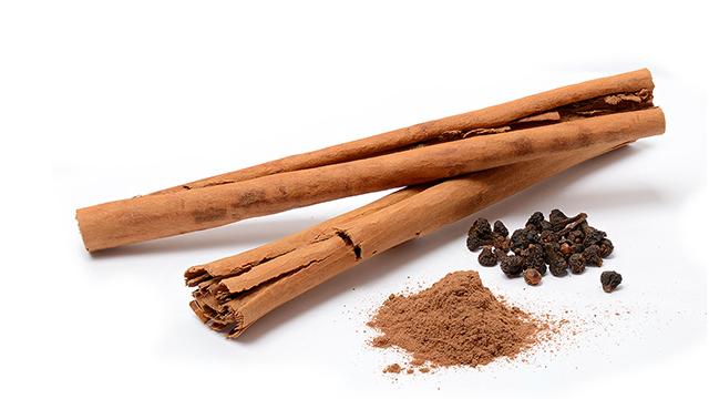 tanaman kayu manis