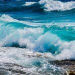 kesehatan laut