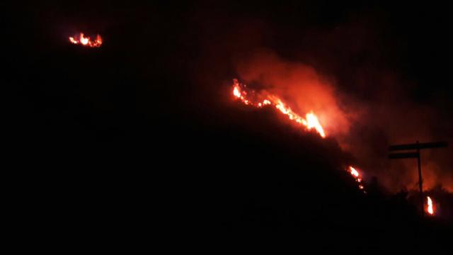kebakaran padang rumput