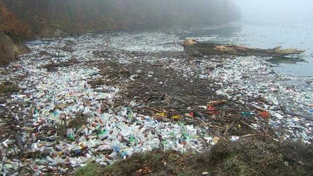 waste issue