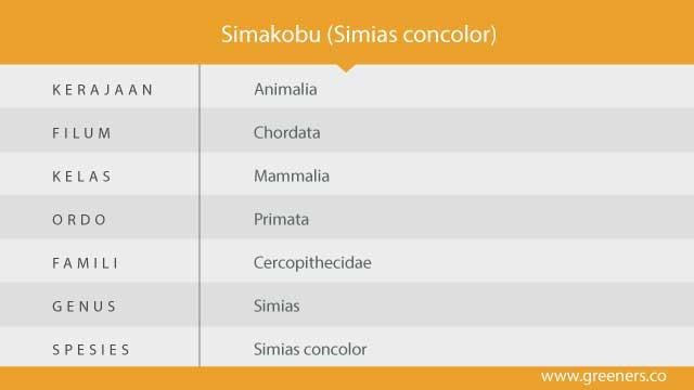 simakobu