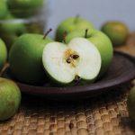 apel malang