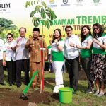 djarum foundation