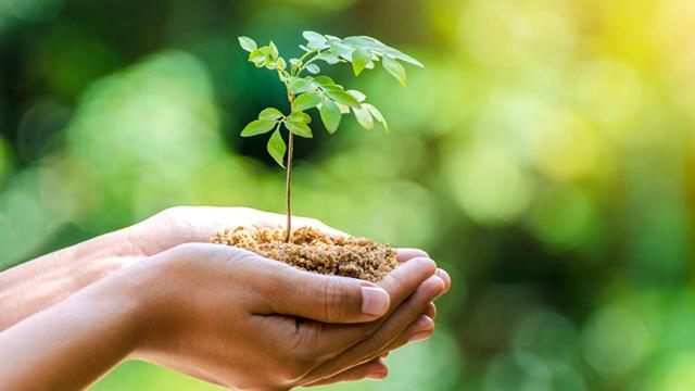 resolusi ramah lingkungan