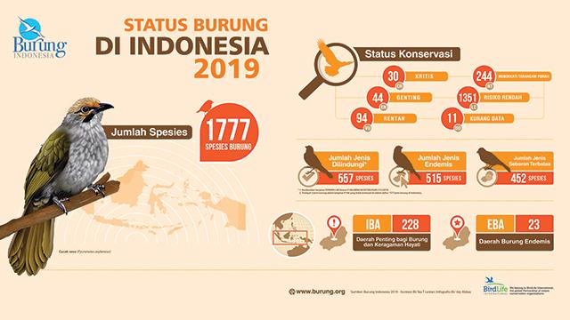 burung indonesia