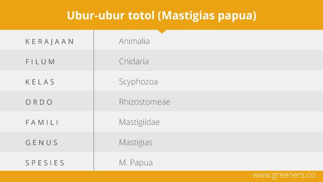 ubur-ubur totol
