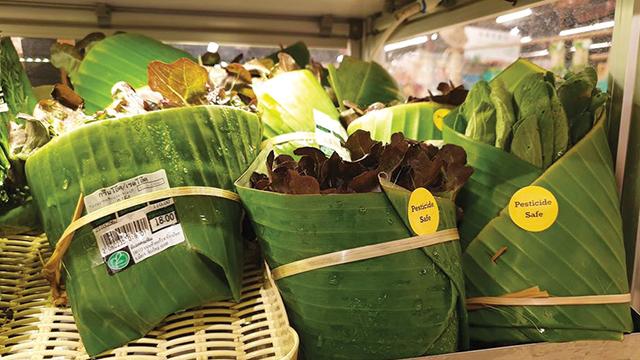 daun pisang