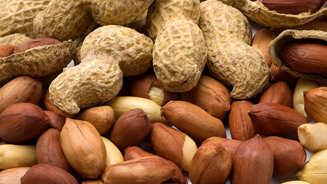 makanan untuk penderita diabetes kacang