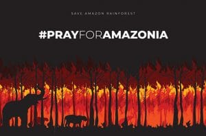Poster Hutan Amazon Terbakar