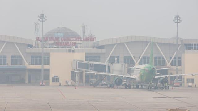 Karhutla Ancam Indonesia, Lebih Dari 300 Ribu Hektar Lahan Terbakar