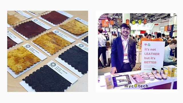 Material Berbasis Jamur yang Ramah Lingkungan