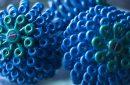 Cora Ball, Penyaring Sumber Mikroplastik dari Pakaian-biru