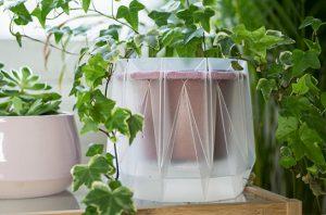 Potrpots, Pot yang Bisa Menyiram Tanaman Secara Otomatis