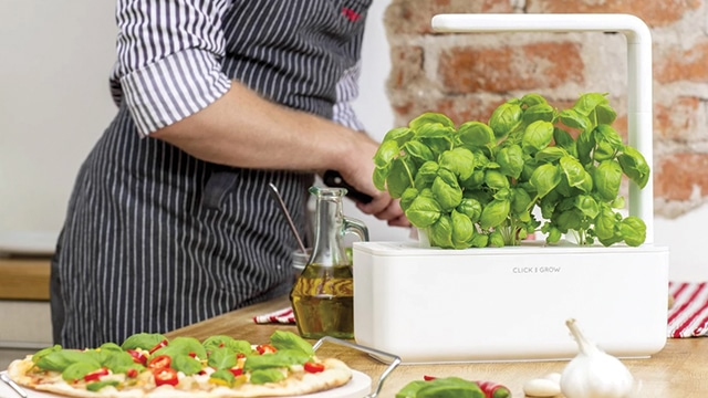 Click & Grow adalah medium menanam di dalam ruangan.