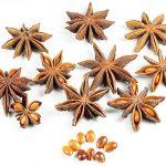 Bunga Lawang (Illicium verum)