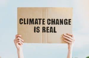 Lima Cara Mengelola Eco-anxiety