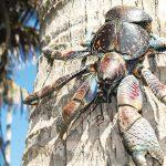 kepiting kenari
