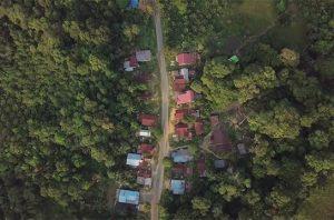 Hutan Adat
