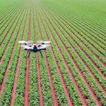 Sensor Pertanian