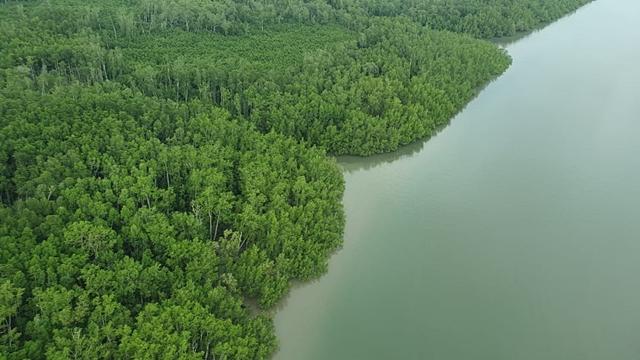 Foto Satelit Wilayah Penelitian di Papua Barat