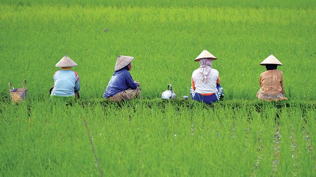Komite Pendayagunaan Petani: Negara Punya Utang Besar kepada Petani