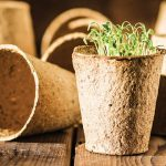 Mahasiswa Kalimantan Sulap Limbah Jadi Pot Organik