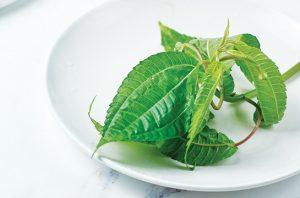 Pohpohan sayur daun khas Jawa Barat.