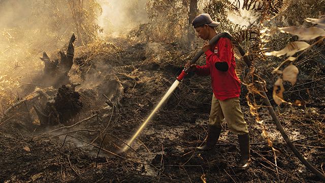 Pakar: UU Cipta Kerja Lemahkan Upaya Perlindungan Lingkungan Hidup