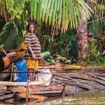 Pergeseran Vegetasi dan Sagu sebagai Solusi Ketahanan Pangan Berkelanjutan
