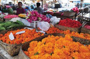 Pasar bunga dan potensi flora tanah air