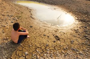 Pemerintah Latih Tiga Puluh ASN Muda sebagai Negosiator Perubahan Iklim