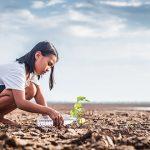 Pemerintah Terbitkan Sukuk Penanganan Perubahan Iklim
