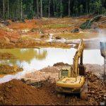 Aktivis Sangsi Pengesahan UU Cipta Kerja Bakal Lindungi Lingkungan Hidup
