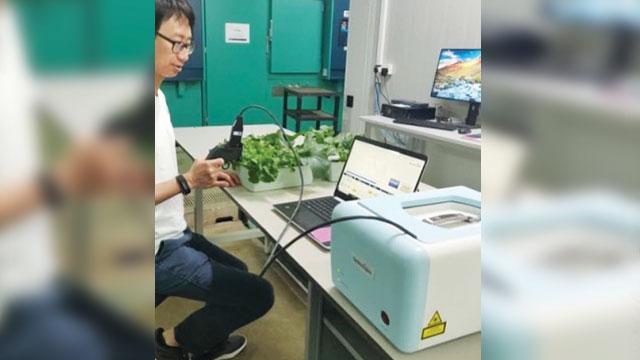 alat pendeteksi stres tanaman portabel