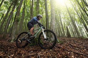 Green Cyclist Virtual Race