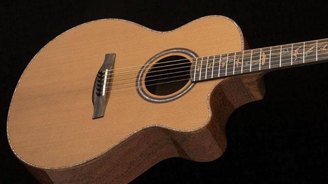 gitar sustainable prs